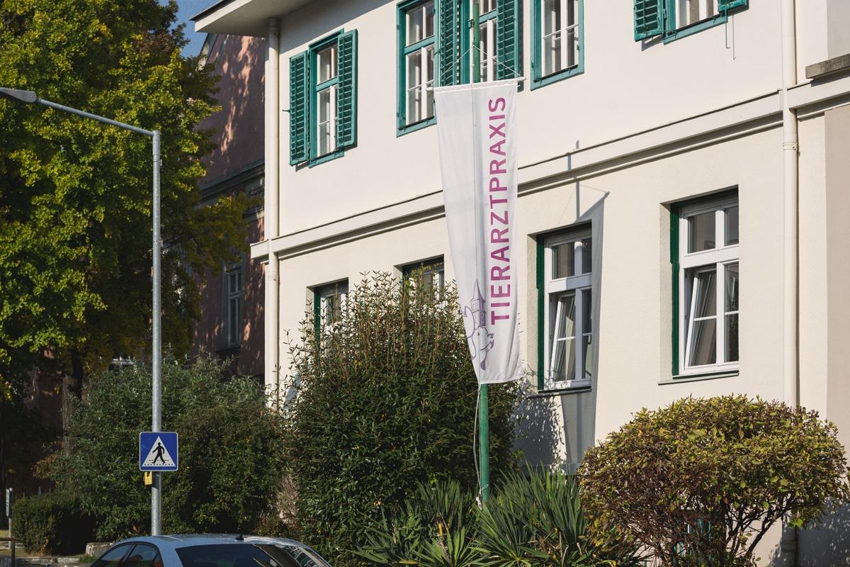 zumEgon_Tierarztpraxis-Judenburg_02
